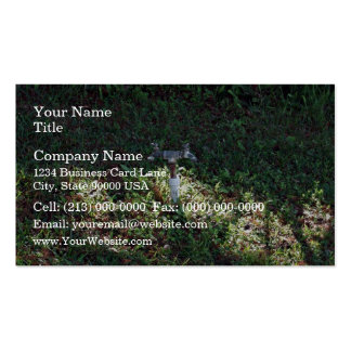 Double outlet water spigot pack of standard business cards