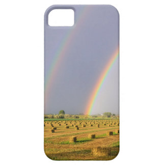 Double Rainbow Case For The iPhone 5