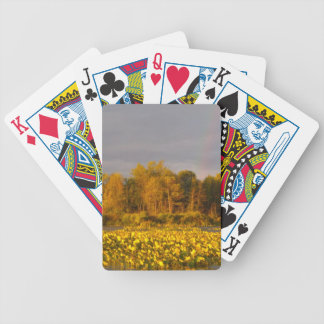 Double Rainbow Pond Bicycle Playing Cards