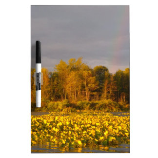 Double Rainbow Pond Dry Erase Board