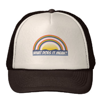 Double Rainbow What Does It Mean? Mesh Hat