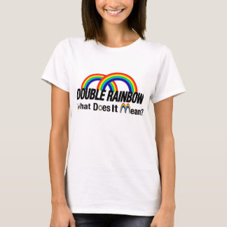 double rainbow what does it mean rb T-Shirt