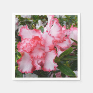 Double Red and White Azaleas Spring Floral Napkin
