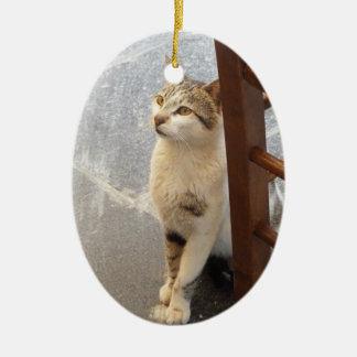 Double-Sided Cat ornament