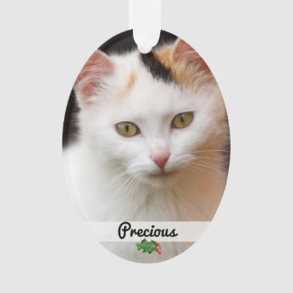Double Sided Pets Photo Name Acrylic Ornament