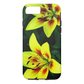 Double the Wonder iPhone 8/7 Case
