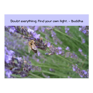 Doubt everything. Find your own light... Postcard