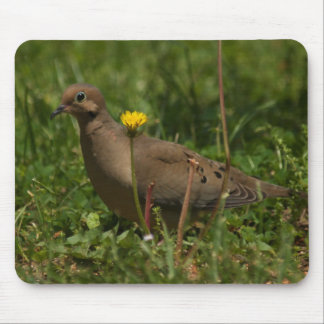 Dove and a daisy mouse pad