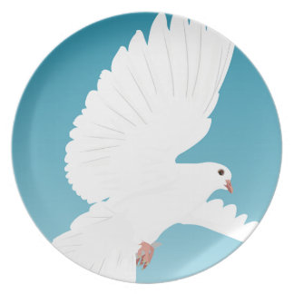 Dove Bird Birds Feather Nature Animal Wing Plate
