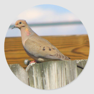 Dove Classic Round Sticker