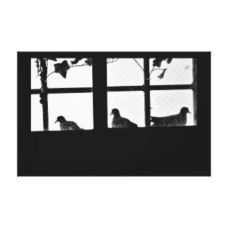 Dove Family Canvas Print