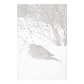 Dove in the Snow Stationery