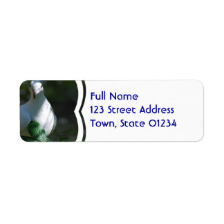 Dove Return Address Label