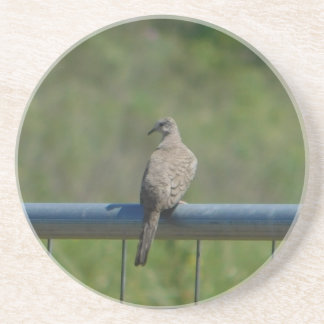 Dove on Fence Coaster