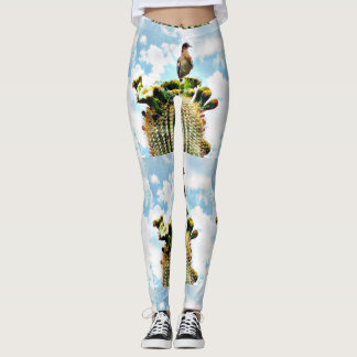 Dove on Saguaro Women's Leggings. Leggings