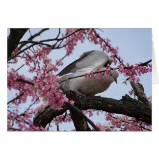 Dove & Redbud Blossoms Card