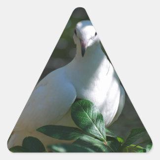 Dove Triangle Sticker