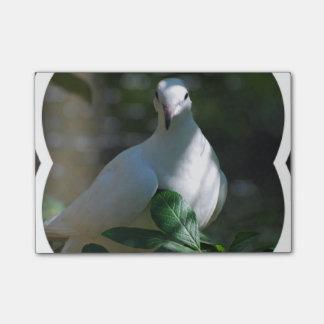 Dove Sticky Note