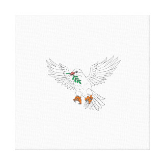 Dove With Olive Leaf Drawing Canvas Print