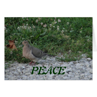 Doves, Colossians 3:15 Card