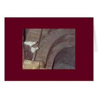 Doves of St. Francis Assisi Note Cards