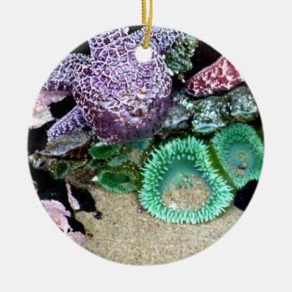 Down by the Sea Christmas Ornament