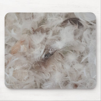 Down Comforter Feathers Photography Funny Mouse Pad
