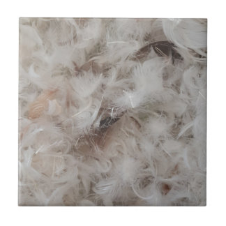 Down Comforter Feathers Photography Funny Tile