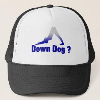 DOWN DOG ANYONE ? TRUCKER HAT