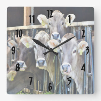 Down On The Farm Cows Square Wall Clock