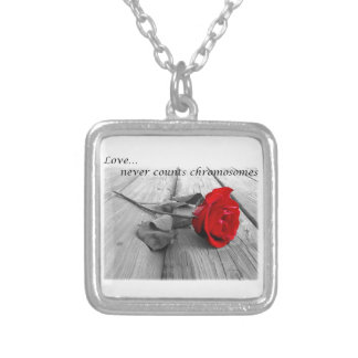 Down syndrome awareness items silver plated necklace