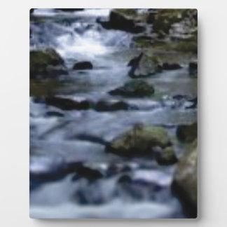 downward flow of creek plaque
