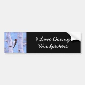 Downy Woodpecker Bumper Sticker