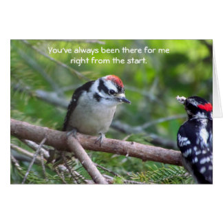 Downy Woodpecker Card for a parent or guardian