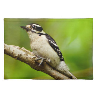 Downy Woodpecker Cloth Placemat