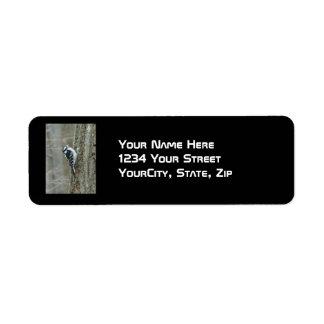 Downy Woodpecker Items Return Address Label