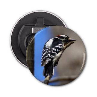 Downy Woodpecker Magnet Backed Bottle Opener