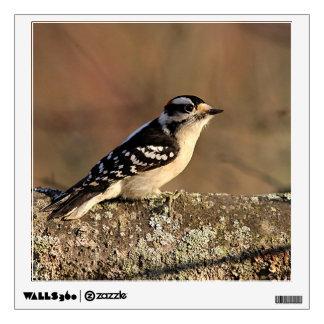 Downy Woodpecker Wall Sticker
