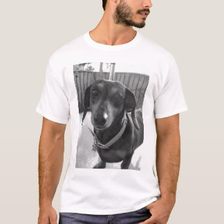 Doxie cakes T-Shirt