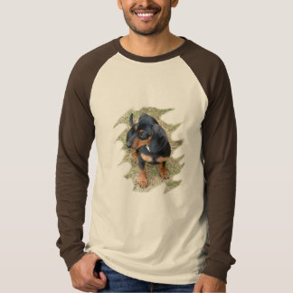 Doxie Love Picture Raglan Tee
