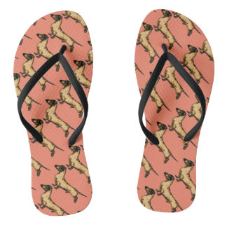 Doxie sandal