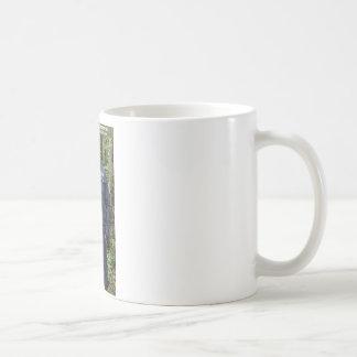 Dr Karl Shuker on Cannock Chase - ShukerNature Coffee Mug