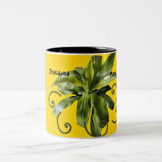 Dracaena Limelight plant, yellow mug