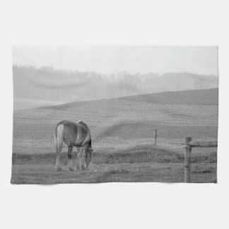 Draft Horse in Black and White Kitchen Towel