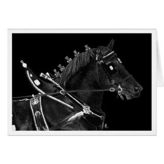 "Draft Horse Note Card - ""Percheron Power"""