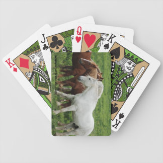 Draft horse playing cards