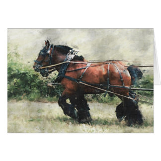 Draft horse team birthday card