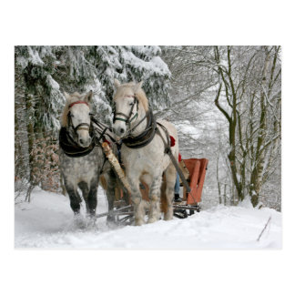 Draft Horses Christmas Postcard