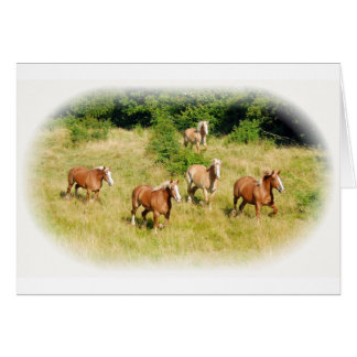 Draft horses in field card