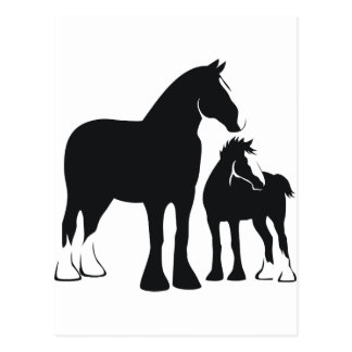 Draft Mare and Foal Postcard